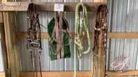 Halters and bridals