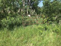 """8'6"""" gate"""