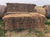 large sq bale of hay (year baled unknown) shedded until June 2021