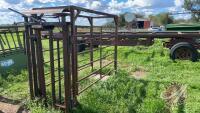 Cattle chute w/auto catch head gate